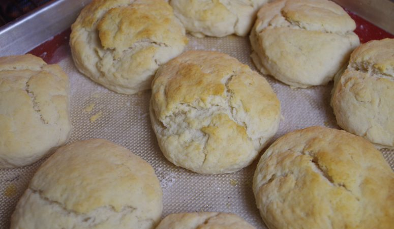 Lard and Butter Biscuits